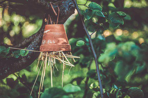 Insect Hotel, Terracotta Flower Pot, Straw