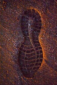 Footprint, Shoe, Sand, Beach, Shoes, Reprint, Foot