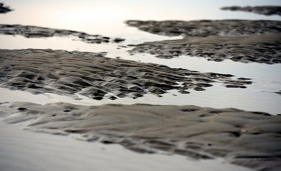 Watts, Ebb, North Sea, Sea, Landscape, Tides, Coast