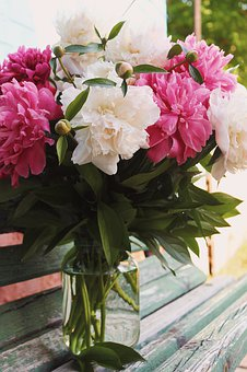 Peonies, Summer, Flowers, Bright, Still Life, Bud, Odor