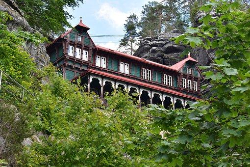 Nature, Building, Architecture, Forest, Light, Color