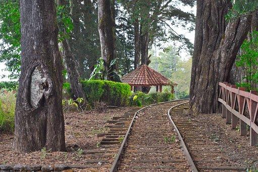 Rail, Peace, Costa Rica, Heredia, Train