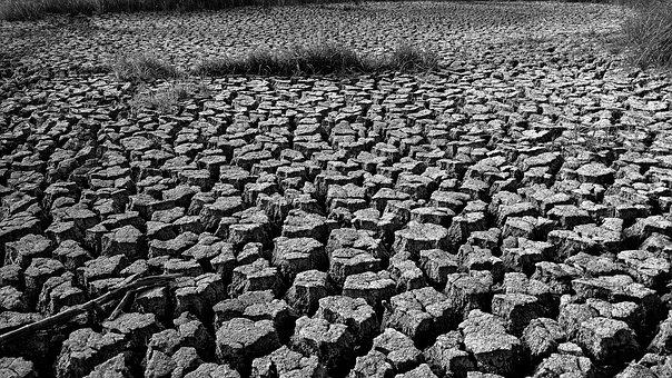 Landscape, Black And White, Earth, No Water