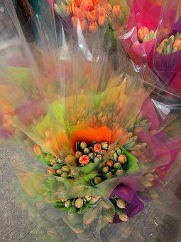 Flowers, Tulips, Spring, Bouquet, Color, Happy