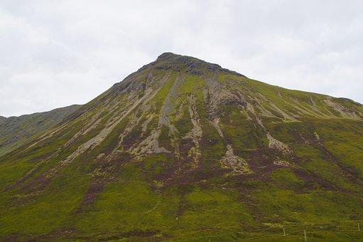 Mountain, Scotland, Erika, Color, Bloom, Landscape