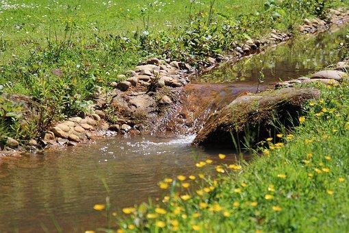 Creek, Water, Nature, Landscape, Rock, Flowing, Stone