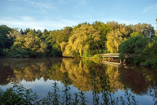 Nature, Enschede The Netherlands, Pond, Bridge