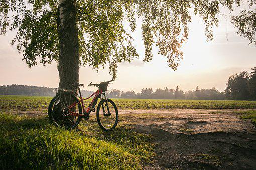 Bike, Summer, Nature, Leisure, Sports, Travel, Road