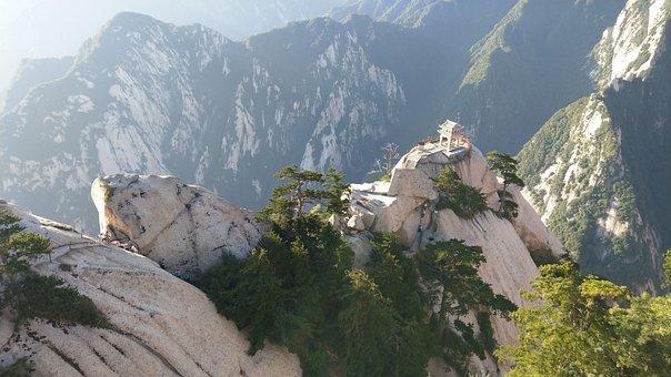 Pinus Armandii, Pavilion, Mountain, Natural, Outdoor