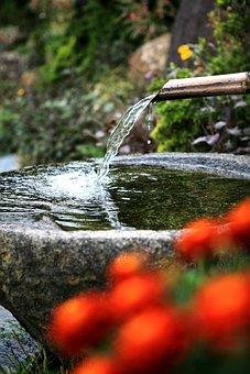 Gutter, Ong Reach Glands, Drinking Water