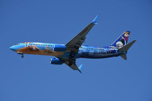 The Colorful Plane, Painted Plane, The Disneyland Plane