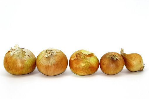 Onion, Old, Winter, Food, Vegetable, Store Products