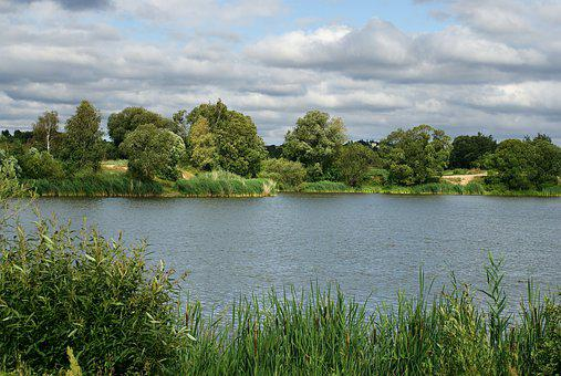 River, Pond, Water, Nature, Landscape, Lake, Green