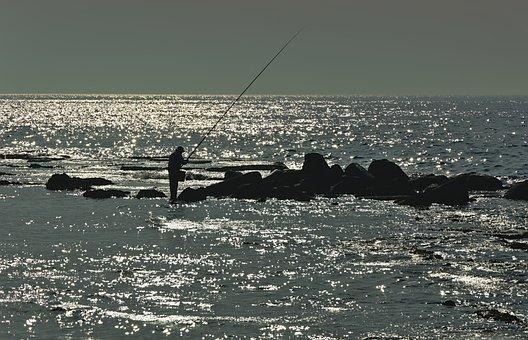 Sea, Water, Angler, Fisherman, Fishing, Rock, Silver