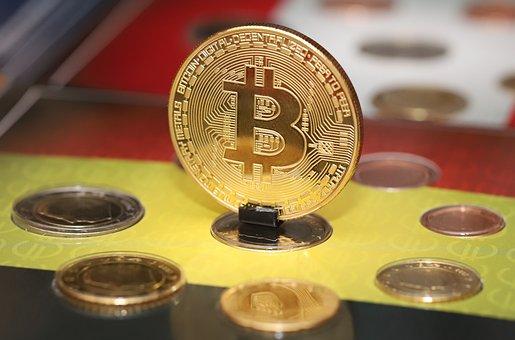 Bitcoin, Cryptocurrency, Portrait, Crypto, Money