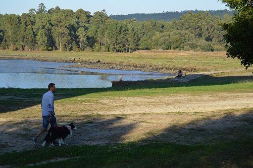 Galicia, Border Collie, Walk, Dog