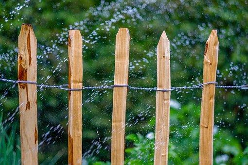 Garden, Hose, Water, Irrigation, Summer, Nature, Wet