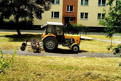 Mowing, Grass, Lawn Mower, Green, Meadow, Cutting, Lawn