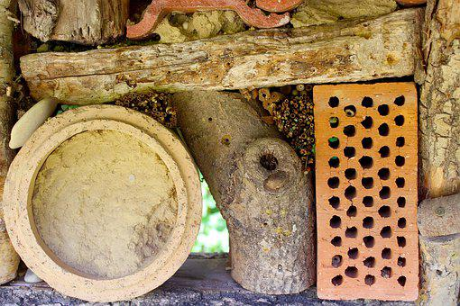 Insect Hotel, Insect, Insect House, Wood