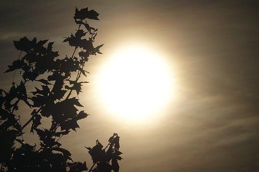 Morning, Morgenstimmung, Mood, Nature, Landscape, Skies