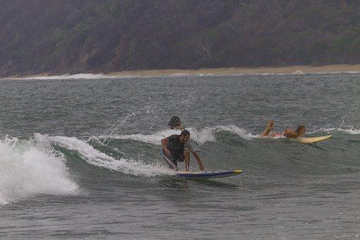Surf, Surfer, Sea, Wave, Ocean, Beach, Summer, Nature