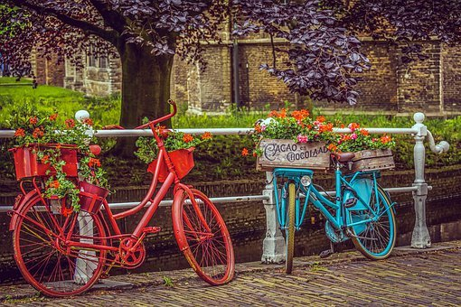 Bicycles, Velo, Wheels, Bikes, Color, Colorful, Painted