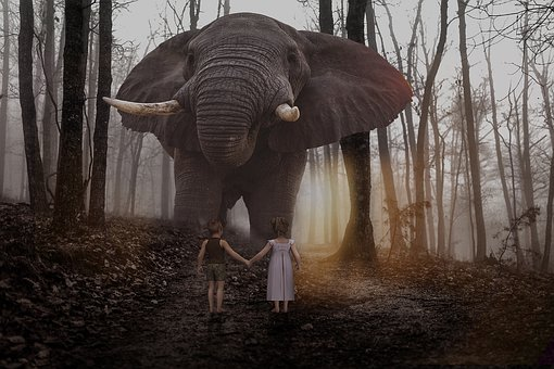 Manipulation, Animal, Elephant, Big, Children, Forest