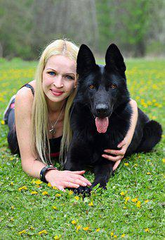 Black Dog, German Shepherd, Friendship, Love, Hug