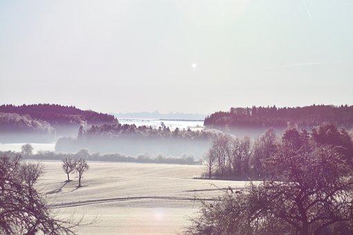 Nature, Fog, Fo, Forest, Mood, Mist, Mystical