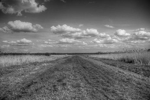 Field, Sky, Clouds, Grass, Meadow, Panorama, Monochrome