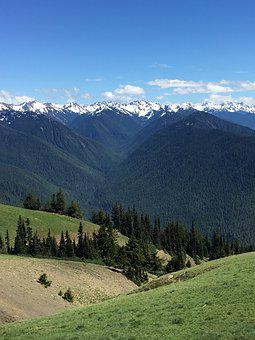 Mountains, Washington, Snow, Grass, Landscape