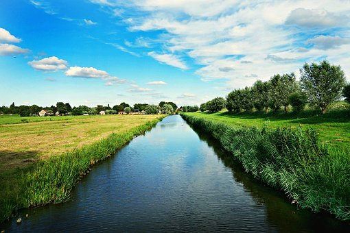 Dutch Landscape, Polder, Meadows, Willows, Countryside