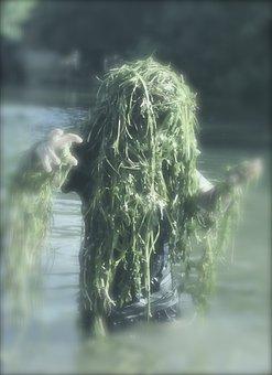 Water Sprite, Seaweed, Aquatic Plants, Funny, Spirit