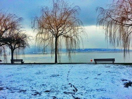 Lake, Winter Landscape, Snowy Landscape, Nature, Bench
