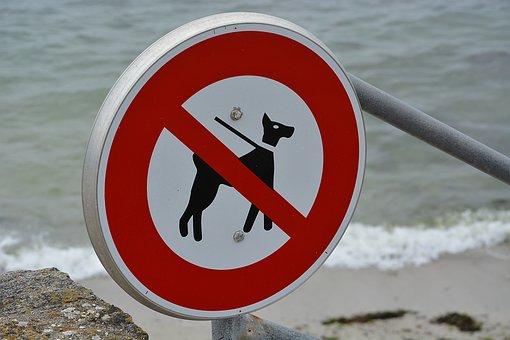 Panel, Ban, No Dogs Allowed, Beach, Good Citizenship