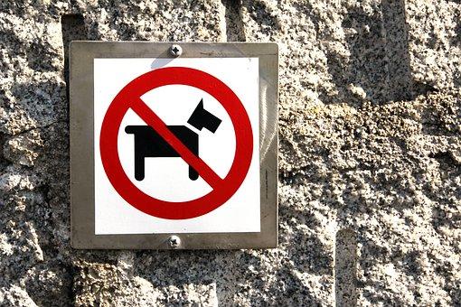 Dog, Prohibited, Ban, Sign, Dog Ban, Prohibitory