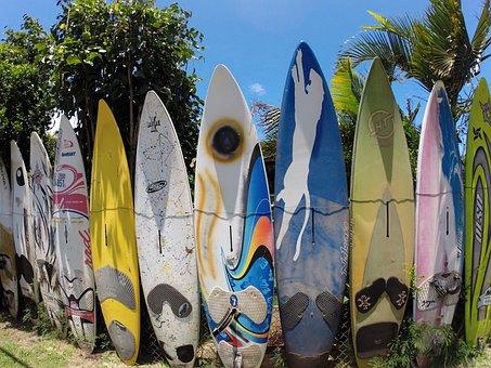Boards, Hawaii, Wall, Several Boards