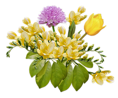 Flowers, Bouquet, Posy, Freesia, Tulip, Composition