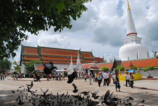 Wat Phra Mahathat, Thai Temple, Temple, Pigeons