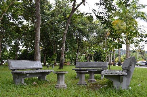 Woods, University, Universe, Forest, Bahia, Uesc