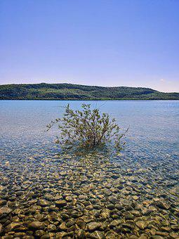 Lake, Water, Nature, Plant, Clear Water, Pond, Sea