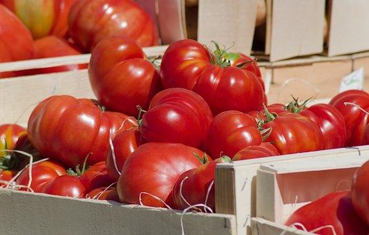 Tomatoes, Vegetables, Market, Vitamins, Salad, Garden