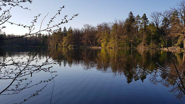 Scenery, Lake, Feuersee, Stuttgart, Spring, Trees