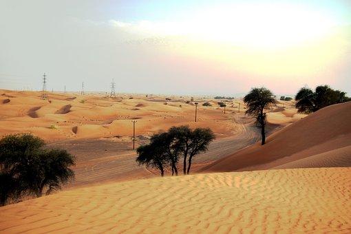U A E, Desert, Sand, Vacations, Travel, Tourism