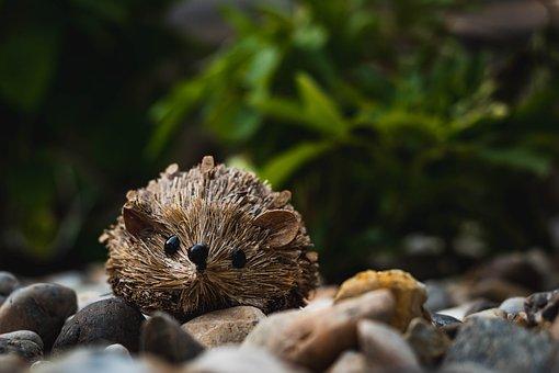 Hedgehog, Stones, Rhinestones, Garden, Character