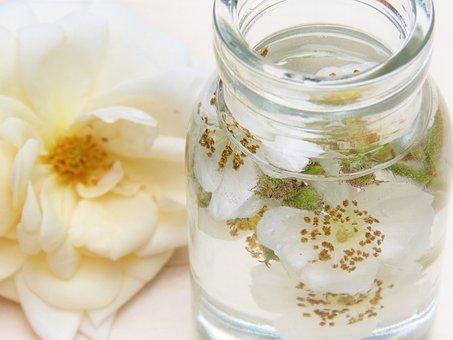 Rose, Water, Glass, Rose Water, Cosmetics, Wellness