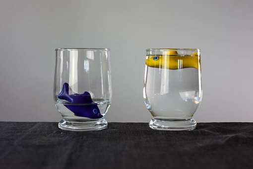 Justice, Water, Injustice, Water Glass, Swim