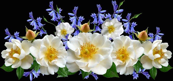 Flowers, Roses, White, Blooms, Bluebells, Arrangement