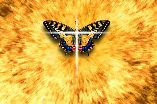 Butterfly, Cross, Faith, Religion, Christian