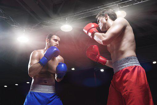 Fight, Fight Club, Boxing, Sport, Punch, Silhouette